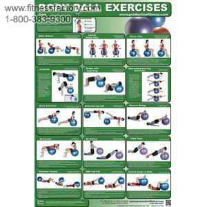 Body Ball Exercise Laminated Poster