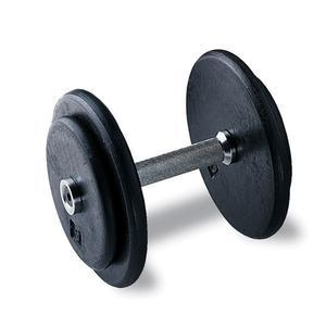 Pro Style Dumbbells 5-120 lbs.