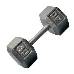 Hex Iron Dumbbells 1-100lbs.