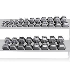 SDS550