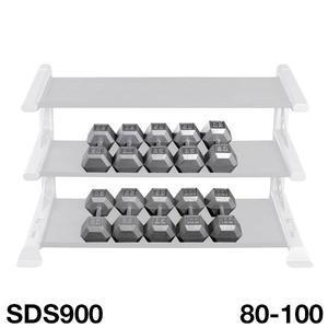 SDS900